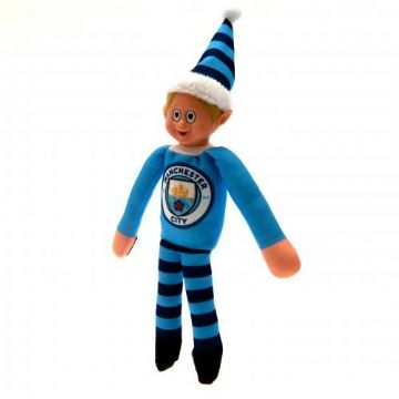 Manchester City Team Elf